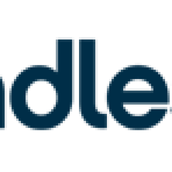 Boundless Logo